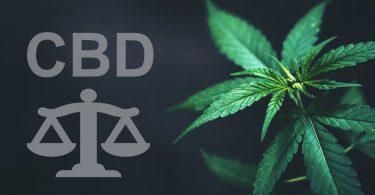 cbd-legislation-france loi